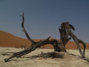 namibia_00006