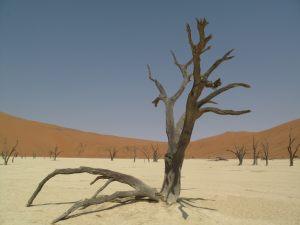 namibia_00009