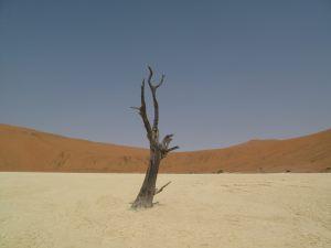 namibia_00011