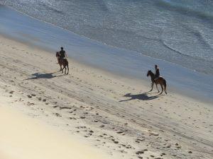 Jericoacoara beach, Ceará