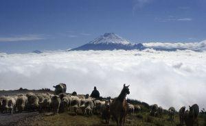 Cotopaxi volcan landscape